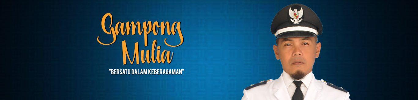 Website Resmi Gampong Mulia